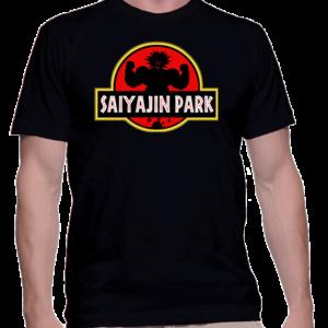saiyajin-park-broly-homme